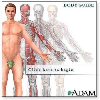 body to body swingerklub århus